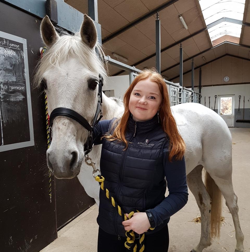 pige & hest
